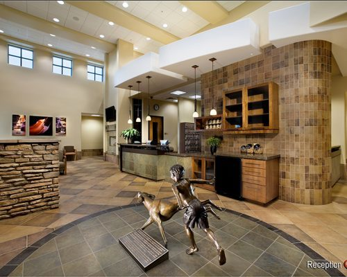 Hospital reception room. Pictured is front desk, seating for clients, and statue of little boy and dog playing